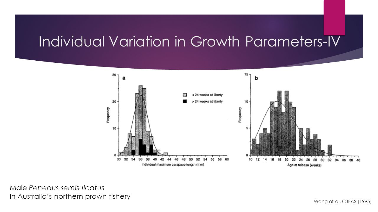 Individual Variation in Growth Parameters-IV Wang et al.