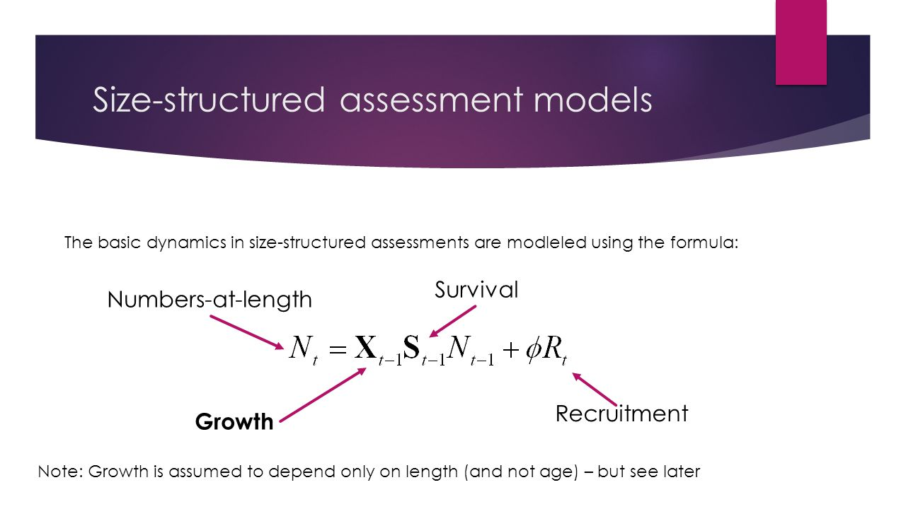 Size-structured assessment models The basic dynamics in size-structured assessments are modleled using the formula: Numbers-at-length Survival Growth Recruitment Note: Growth is assumed to depend only on length (and not age) – but see later