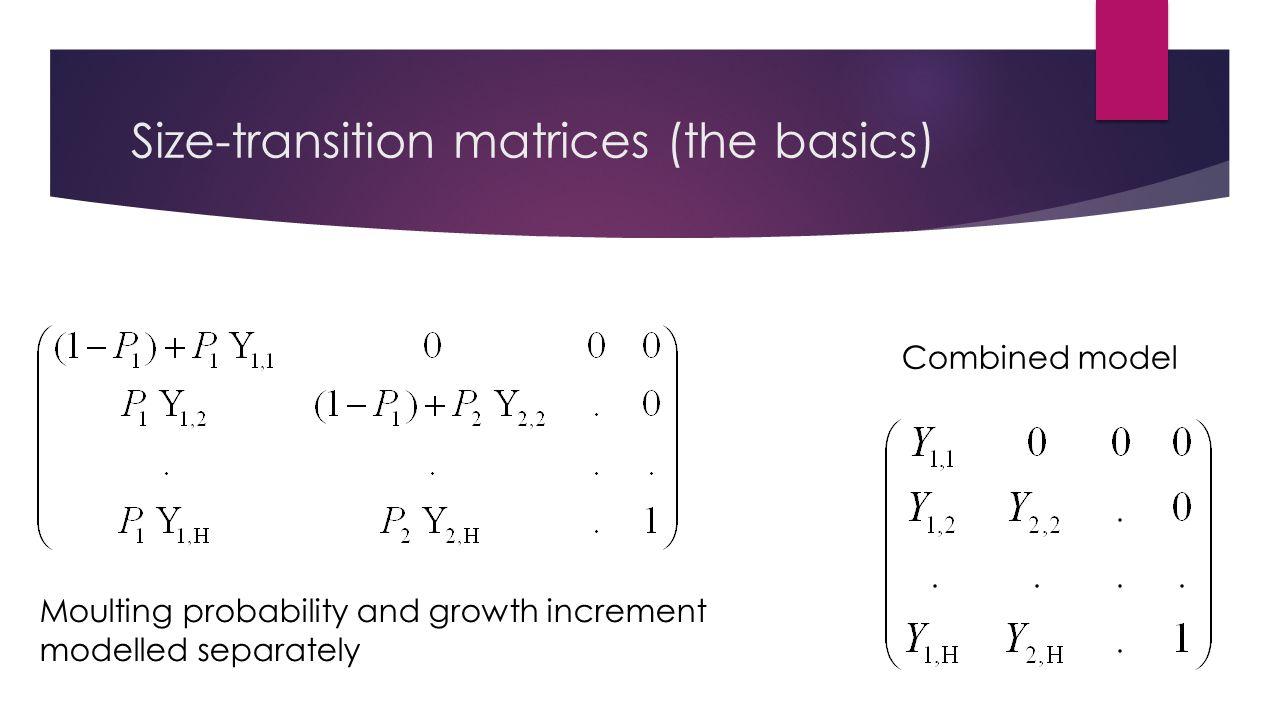 Size-transition matrices (the basics) Moulting probability and growth increment modelled separately Combined model