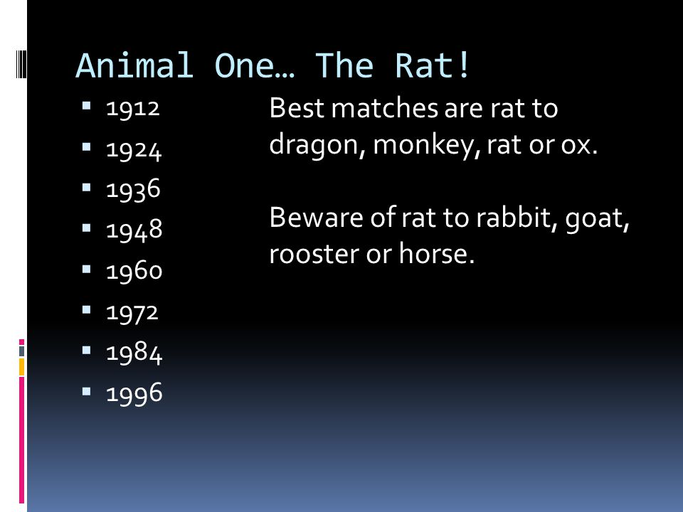 Animal One… The Rat!  1912  1924  1936  1948  1960  1972  1984  1996 Best matches are rat to dragon, monkey, rat or ox. Beware of rat to rabbi