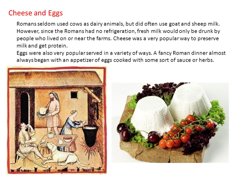 Cheese and Eggs Romans seldom used cows as dairy animals, but did often use goat and sheep milk.