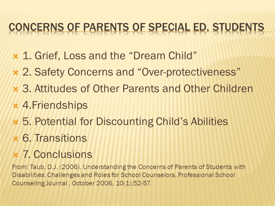 " 1. Grief, Loss and the ""Dream Child""  2. Safety Concerns and ""Over-protectiveness""  3. Attitudes of Other Parents and Other Children  4.Friendshi"