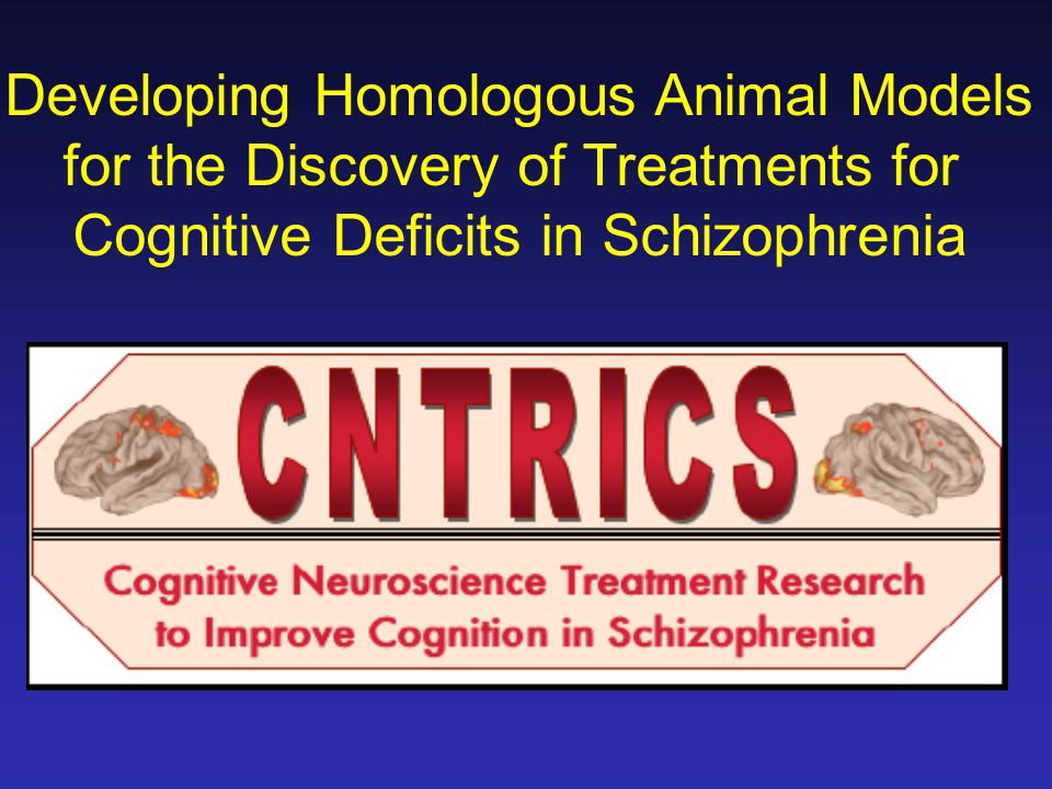 Developing Homologous Animal Models for the Discovery of Treatments for Cognitive Deficits in Schizophrenia