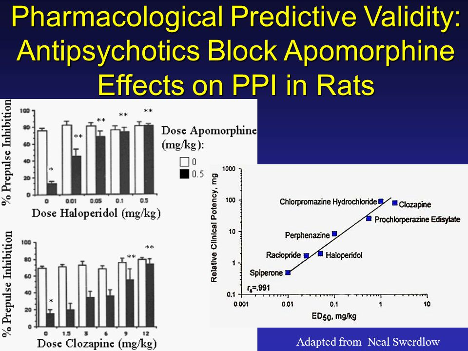 Pharmacological Predictive Validity: Antipsychotics Block Apomorphine Effects on PPI in Rats Adapted from Neal Swerdlow