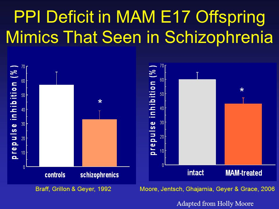 * * Braff, Grillon & Geyer, 1992 PPI Deficit in MAM E17 Offspring Mimics That Seen in Schizophrenia Moore, Jentsch, Ghajarnia, Geyer & Grace, 2006 Adapted from Holly Moore
