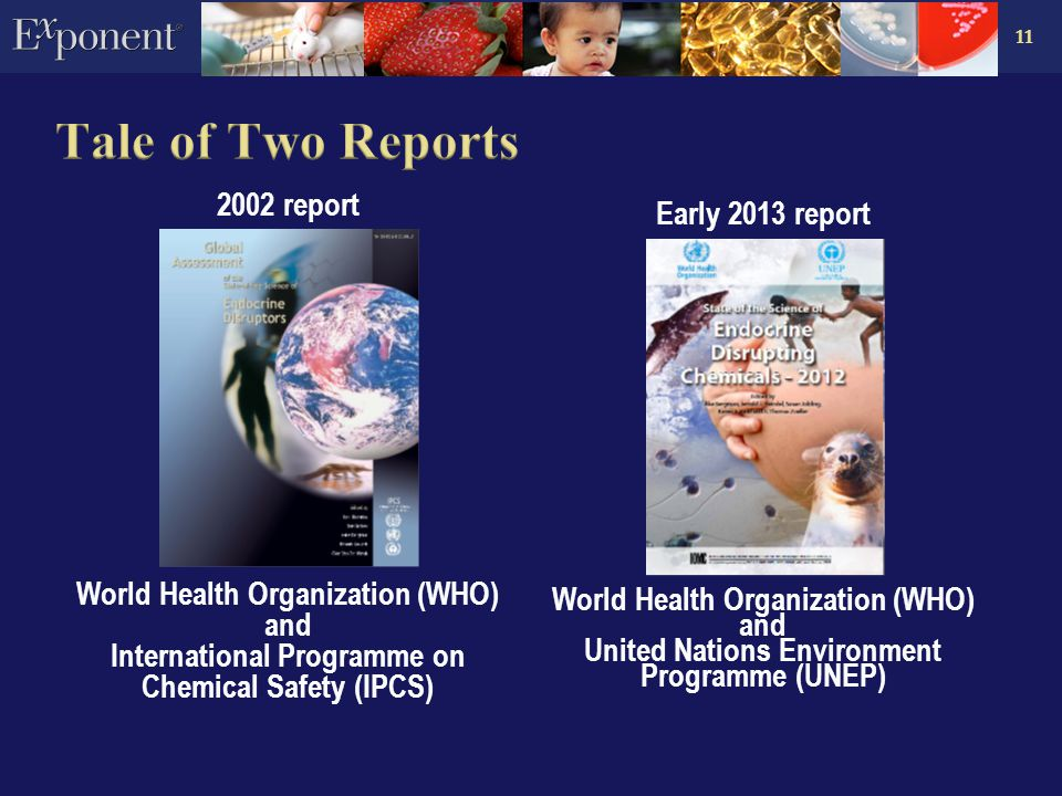 11 2002 report World Health Organization (WHO) and International Programme on Chemical Safety (IPCS) Early 2013 report World Health Organization (WHO) and United Nations Environment Programme (UNEP)