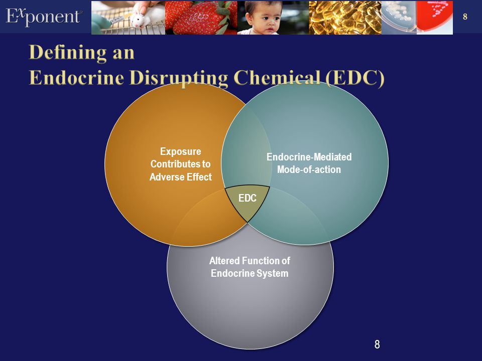 8 Altered Function of Endocrine System Altered Function of Endocrine System Exposure Contributes to Adverse Effect Exposure Contributes to Adverse Effect Endocrine-Mediated Mode-of-action 8 EDC