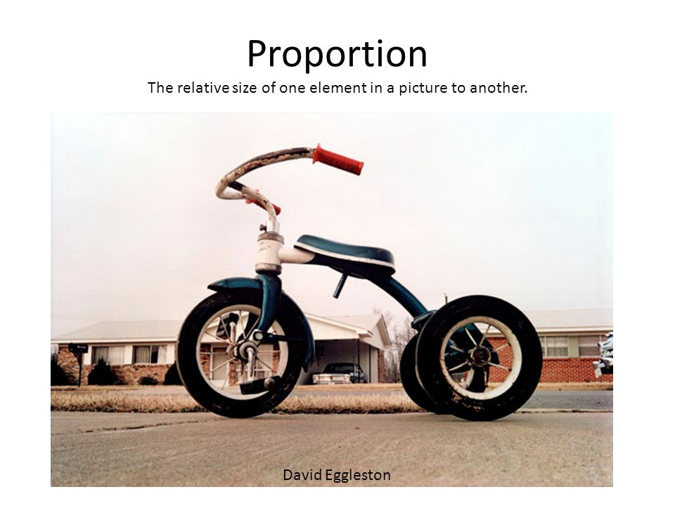 Proportion The relative size of one element in a picture to another. David Eggleston