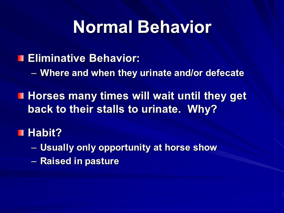 Normal Behavior Eliminative Behavior: –Where and when they urinate and/or defecate Horses many times will wait until they get back to their stalls to urinate.