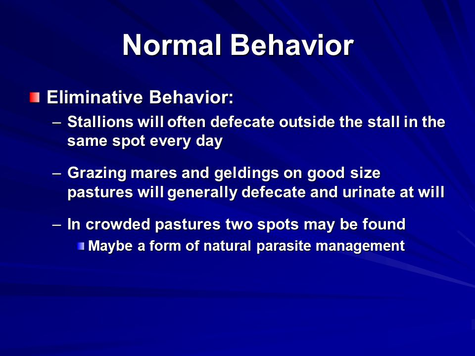 Normal Behavior Eliminative Behavior: –Stallions will often defecate outside the stall in the same spot every day –Grazing mares and geldings on good size pastures will generally defecate and urinate at will –In crowded pastures two spots may be found Maybe a form of natural parasite management