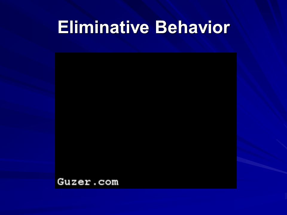 Eliminative Behavior
