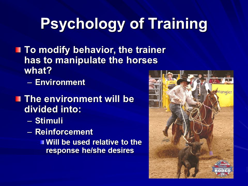 Psychology of Training To modify behavior, the trainer has to manipulate the horses what.