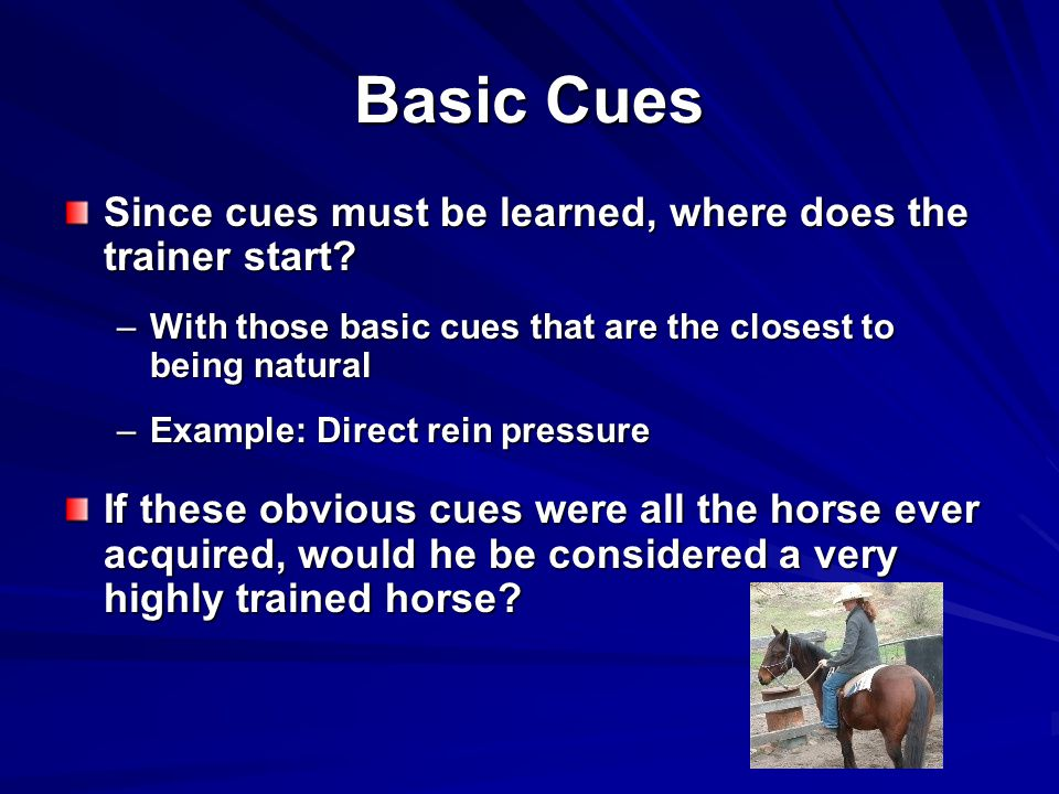 Basic Cues Since cues must be learned, where does the trainer start.