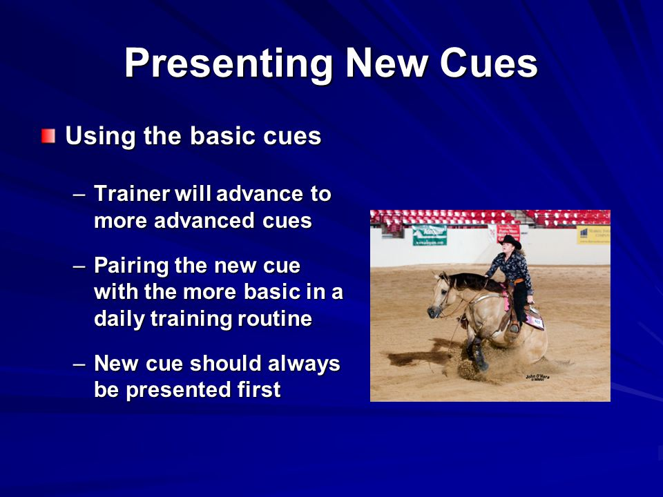 Presenting New Cues Using the basic cues –Trainer will advance to more advanced cues –Pairing the new cue with the more basic in a daily training routine –New cue should always be presented first