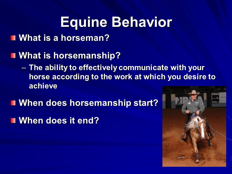 Equine Behavior What is a horseman.What is horsemanship.