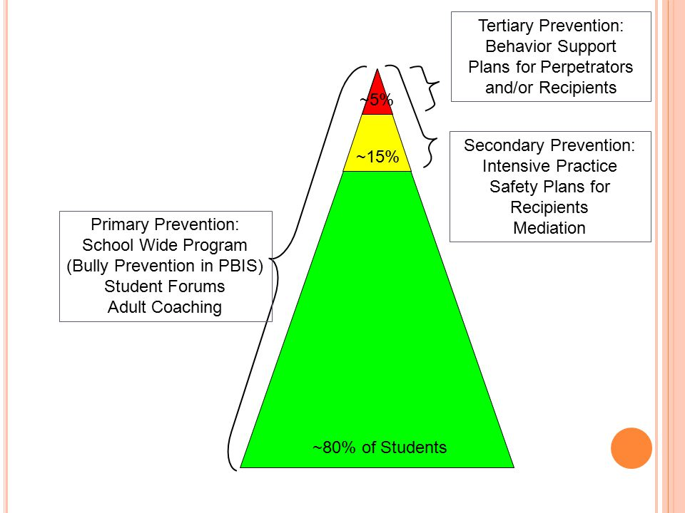 Primary Prevention: School Wide Program (Bully Prevention in PBIS) Student Forums Adult Coaching Secondary Prevention: Intensive Practice Safety Plans for Recipients Mediation Tertiary Prevention: Behavior Support Plans for Perpetrators and/or Recipients ~80% of Students ~15% ~5%
