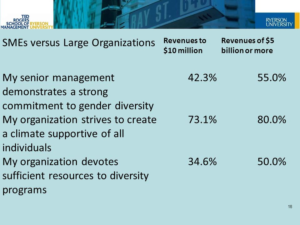 SMEs versus Large Organizations Revenues to $10 million Revenues of $5 billion or more My senior management demonstrates a strong commitment to gender diversity 42.3%55.0% My organization strives to create a climate supportive of all individuals 73.1%80.0% My organization devotes sufficient resources to diversity programs 34.6%50.0% 18