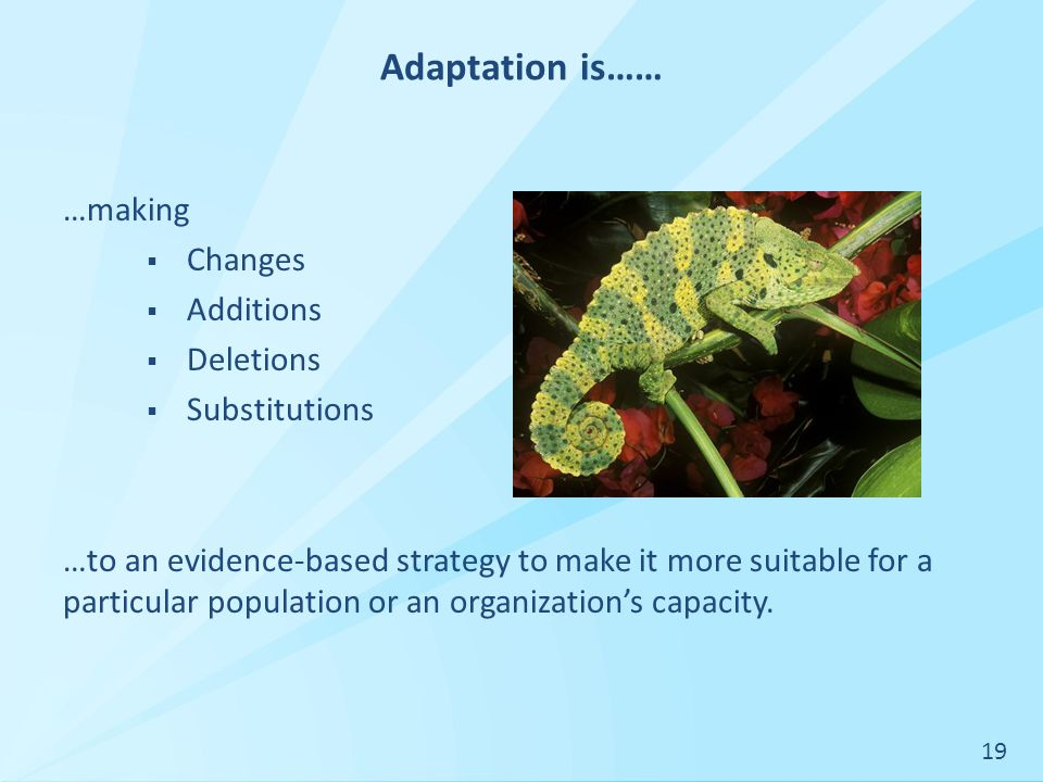 Adaptation is…… …making  Changes  Additions  Deletions  Substitutions …to an evidence-based strategy to make it more suitable for a particular population or an organization's capacity.