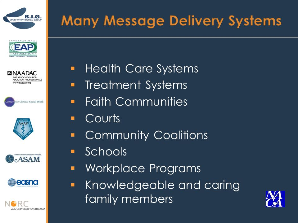  Health Care Systems  Treatment Systems  Faith Communities  Courts  Community Coalitions  Schools  Workplace Programs  Knowledgeable and caring family members
