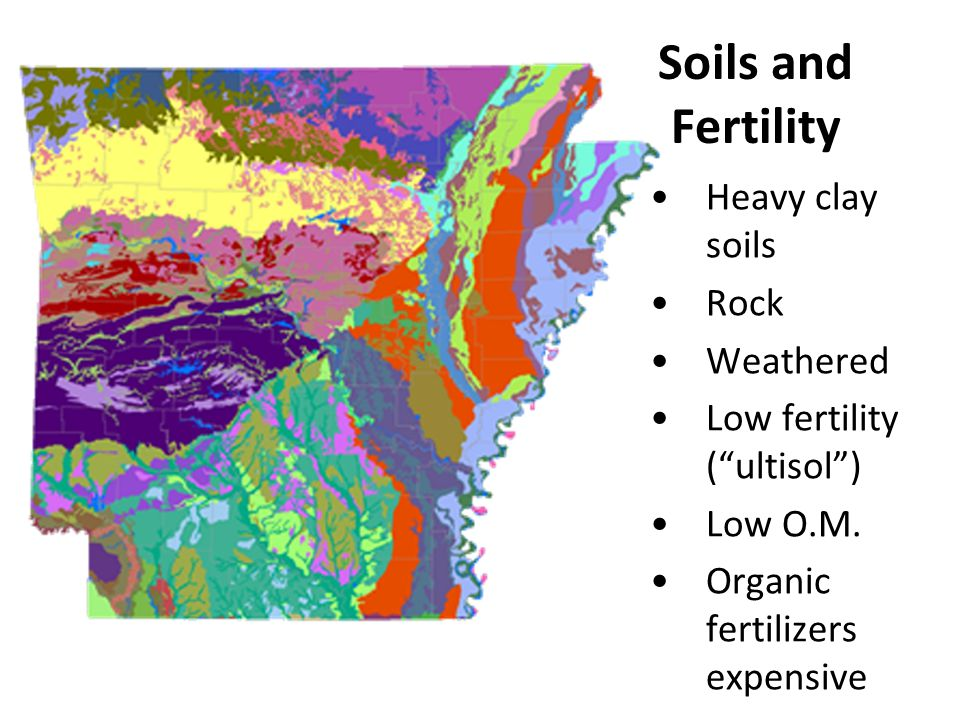 "Soils and Fertility Heavy clay soils Rock Weathered Low fertility (""ultisol"") Low O.M. Organic fertilizers expensive"