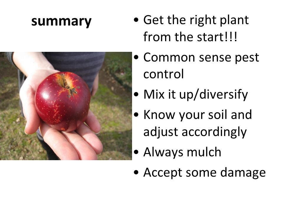 summary Get the right plant from the start!!! Common sense pest control Mix it up/diversify Know your soil and adjust accordingly Always mulch Accept
