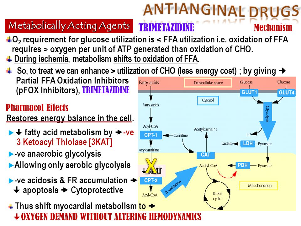  3KAT Metabolically Acting Agents TRIMETAZIDINE O 2 requirement for glucose utilization is oxygen per unit of ATP generated than oxidation of CHO. Du