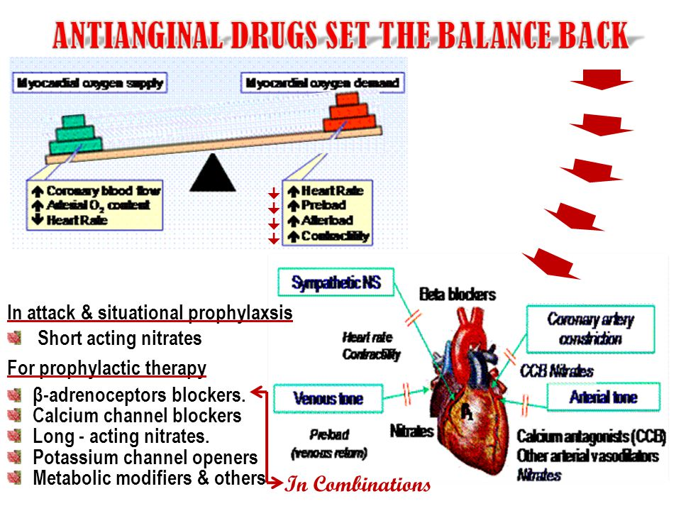  In attack & situational prophylaxsis Short acting nitrates For prophylactic therapy β-adrenoceptors blockers. Calcium channel blockers Long -