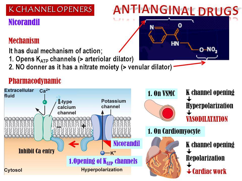 It has dual mechanism of action; 1. Opens K ATP channels (> arteriolar dilator) 2. NO donner as it has a nitrate moiety (> venular dilator) K CHANNEL