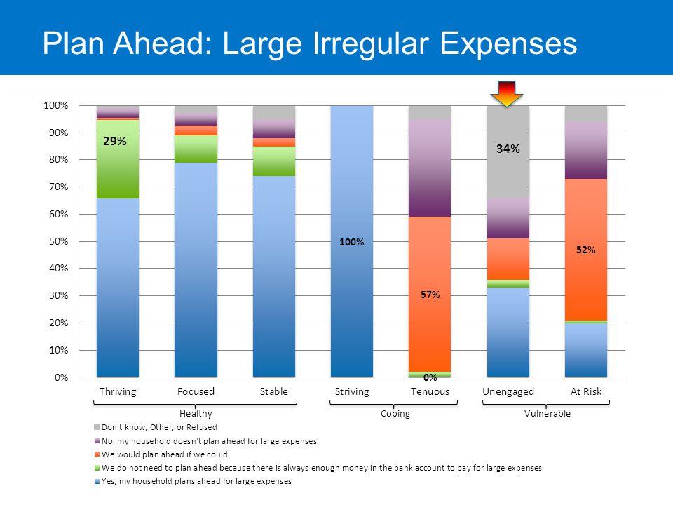 Plan Ahead: Large Irregular Expenses 29%