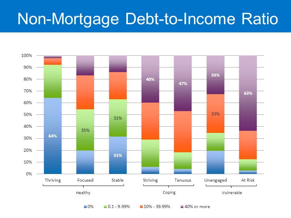 Non-Mortgage Debt-to-Income Ratio