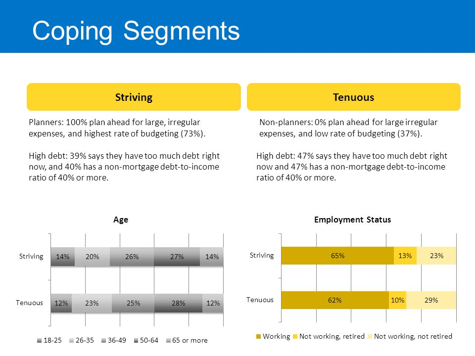 Tenuous Coping Segments Striving Planners: 100% plan ahead for large, irregular expenses, and highest rate of budgeting (73%). High debt: 39% says the