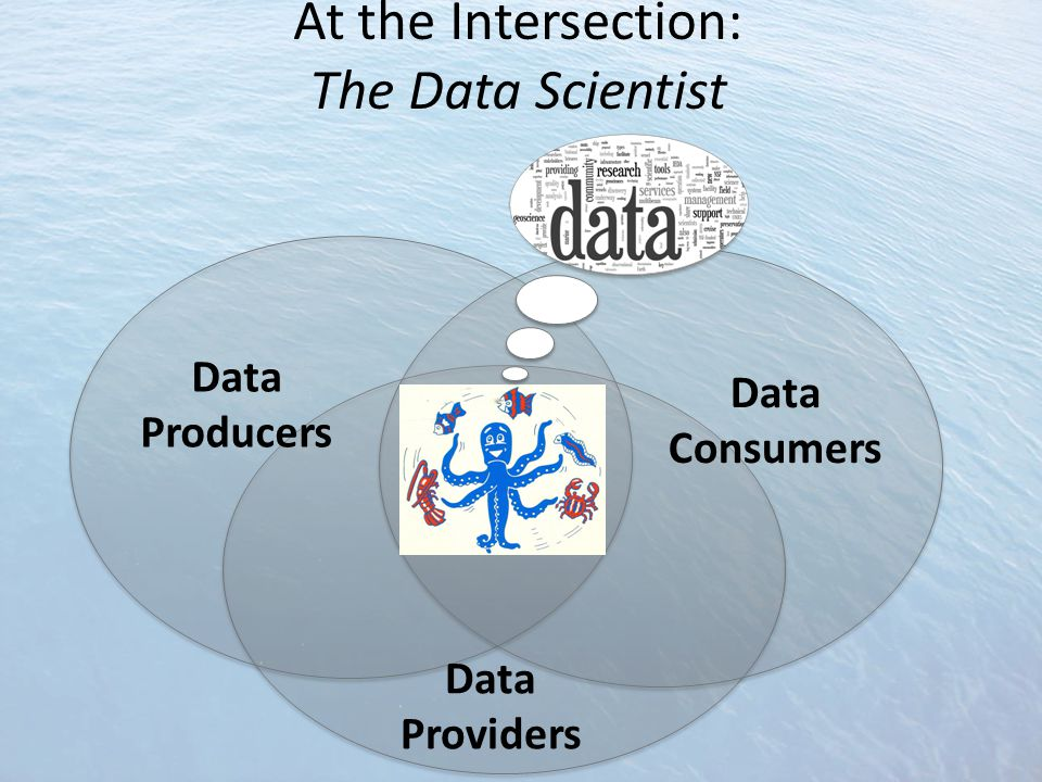 At the Intersection: The Data Scientist Data Producers Data Providers Data Consumers