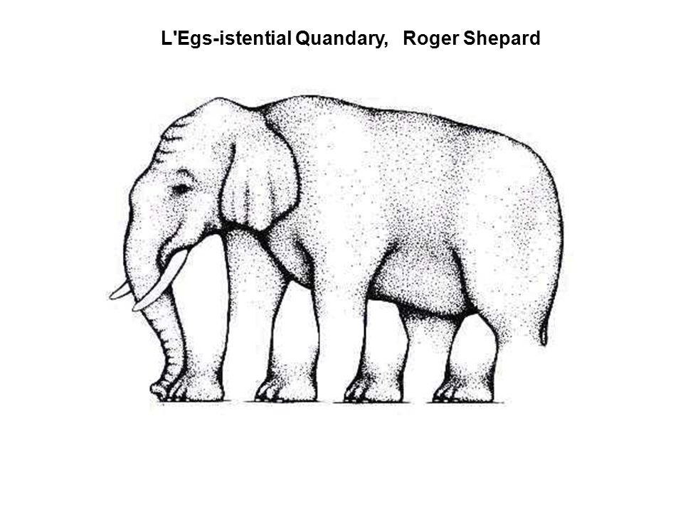 L Egs-istential Quandary, Roger Shepard