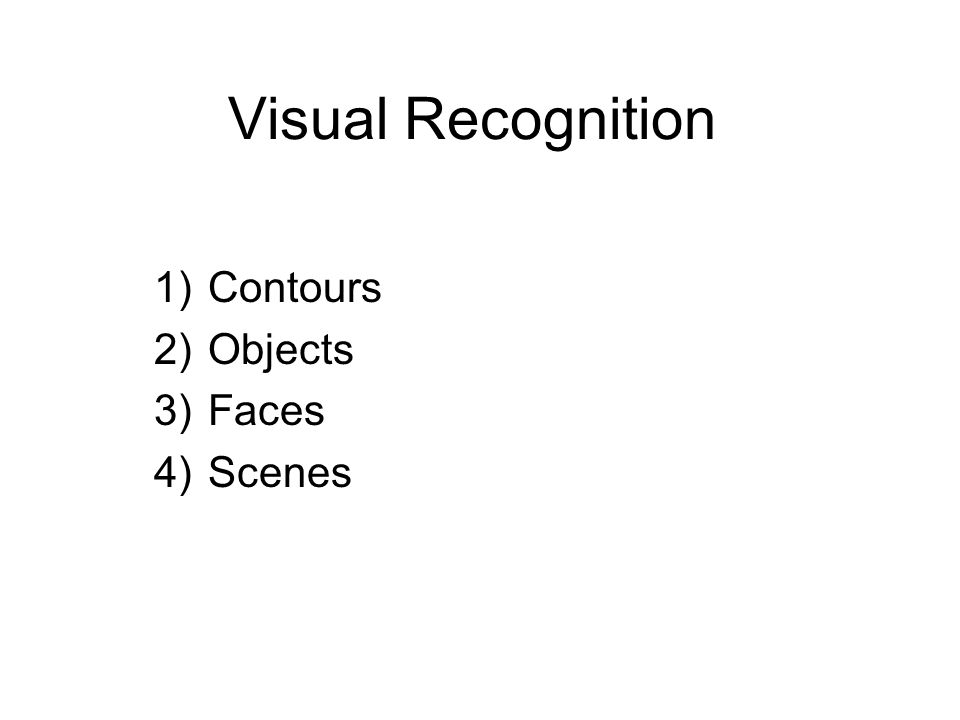 Visual Recognition 1)Contours 2)Objects 3)Faces 4)Scenes