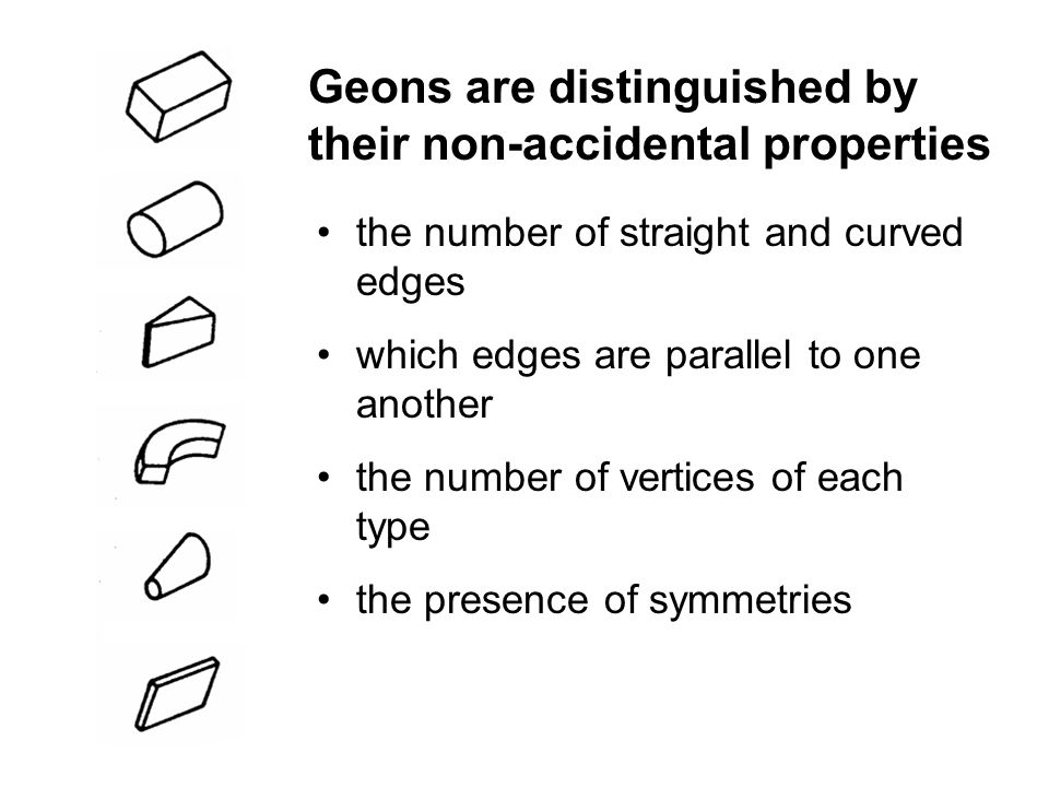 the number of straight and curved edges which edges are parallel to one another the number of vertices of each type the presence of symmetries Geons are distinguished by their non-accidental properties