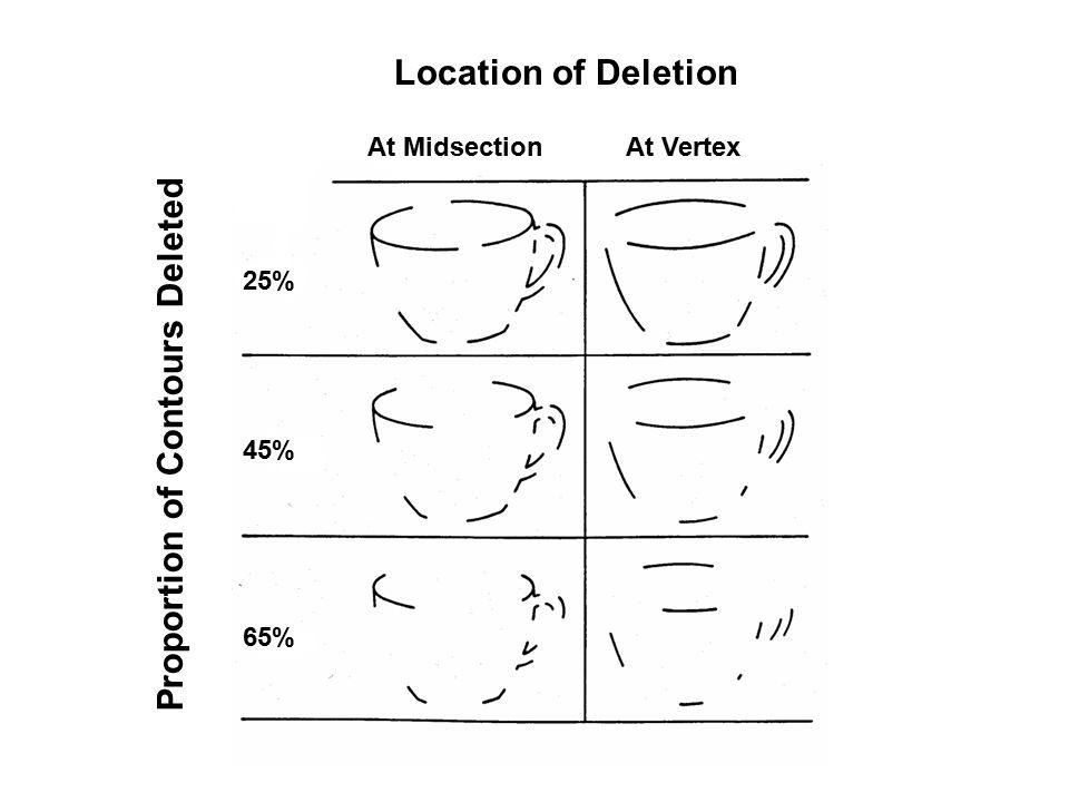 Location of Deletion At MidsectionAt Vertex Proportion of Contours Deleted 25% 45% 65%