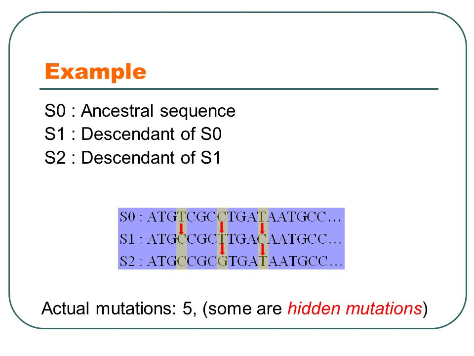 Example S0 : Ancestral sequence S1 : Descendant of S0 S2 : Descendant of S1 Actual mutations: 5, (some are hidden mutations)