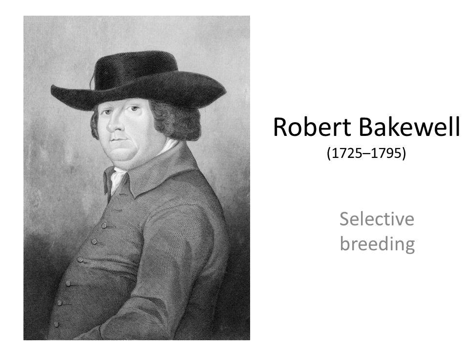 Robert Bakewell (1725–1795) Selective breeding