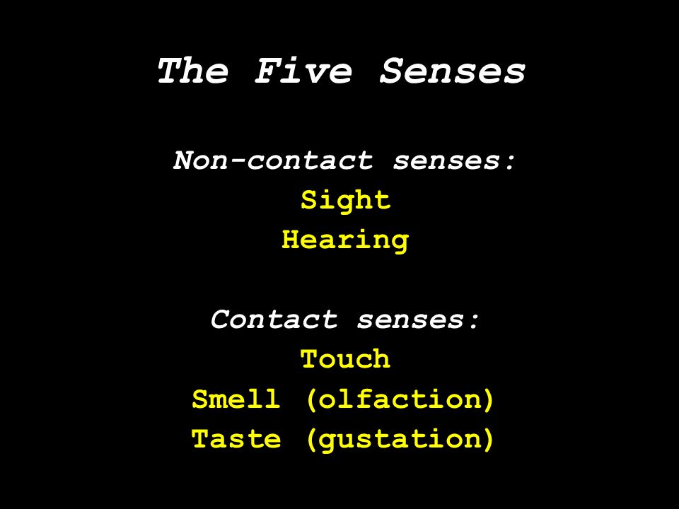 The Five Senses Non-contact senses: Sight Hearing Contact senses: Touch Smell (olfaction) Taste (gustation)
