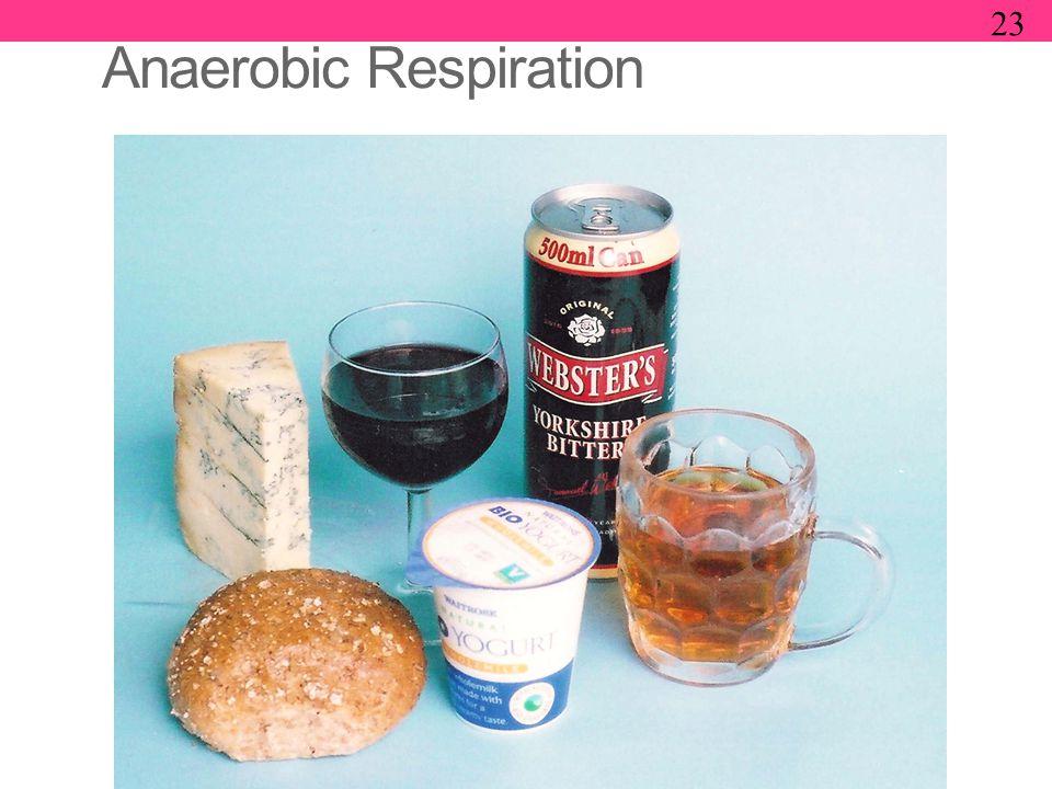 Anaerobic Respiration 23