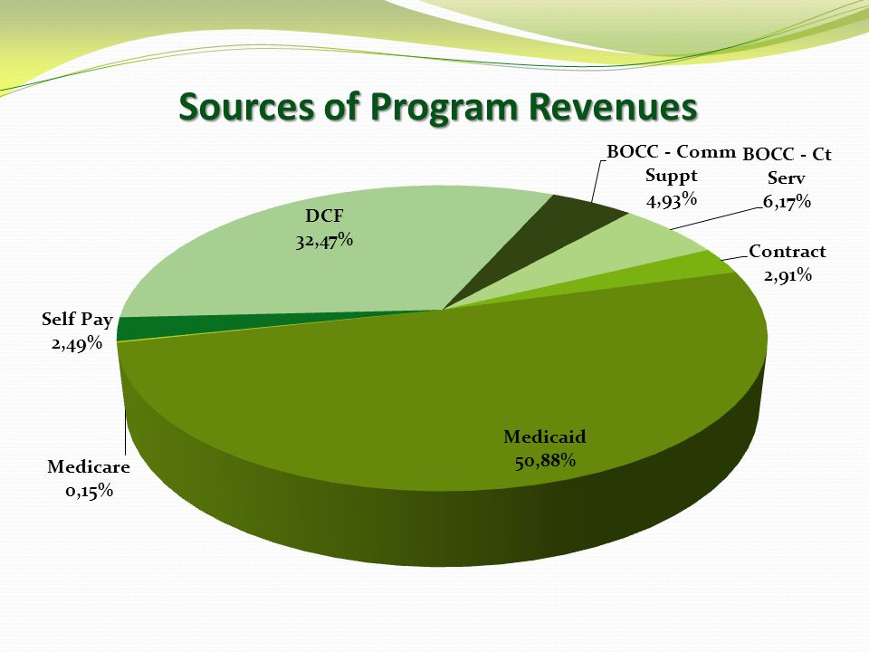Sources of Program Revenues