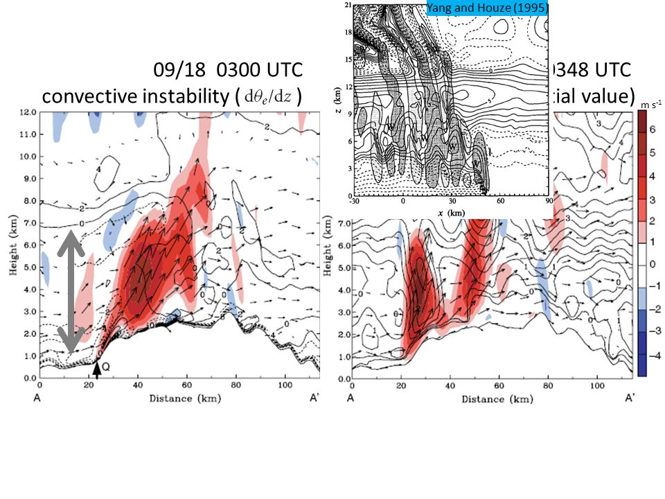 m s -1 09/18 0300 UTC convective instability ( ) 09/18 0348 UTC Θ'(the deviation of initial value) Yang and Houze (1995)