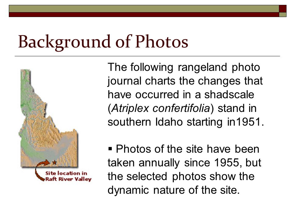 The following rangeland photo journal charts the changes that have occurred in a shadscale (Atriplex confertifolia) stand in southern Idaho starting in1951.