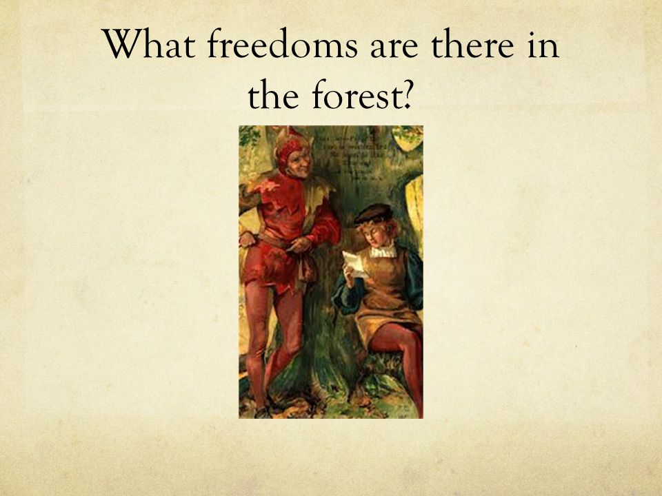 What freedoms are there in the forest