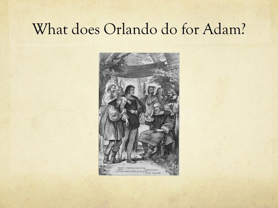 What does Orlando do for Adam