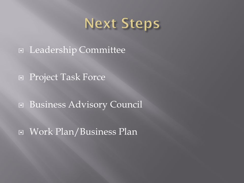 Leadership Committee  Project Task Force  Business Advisory Council  Work Plan/Business Plan