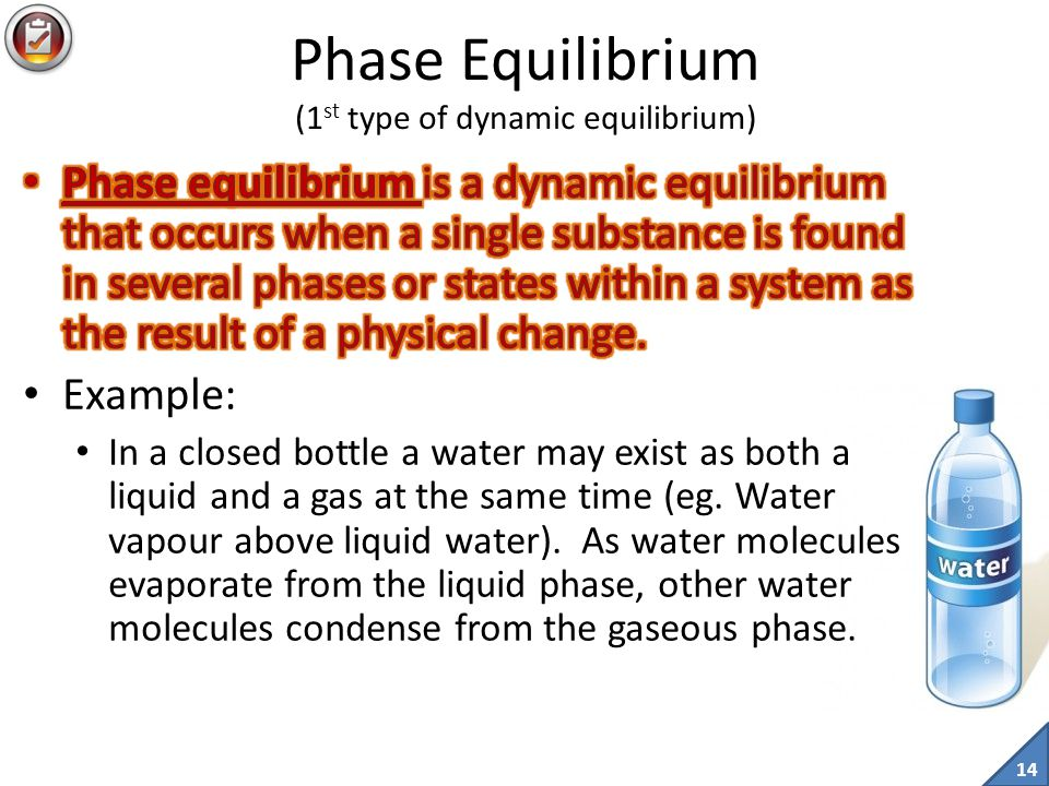13 A dynamic equilibrium is a bit like a hockey game.