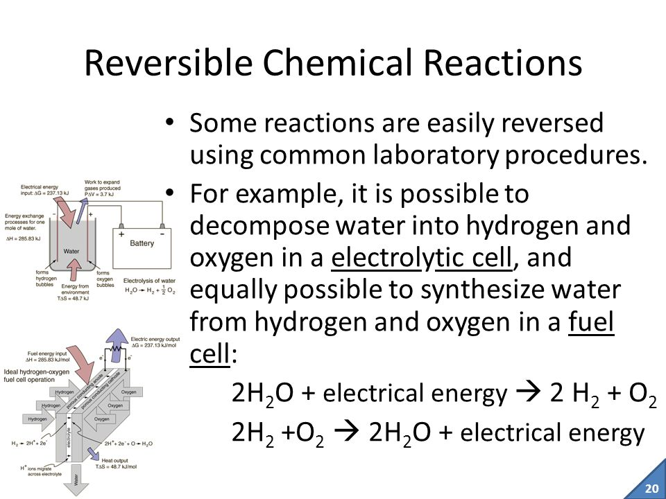 19 Reactants  Products Reactants can become products, but products cannot turn back into reactants.
