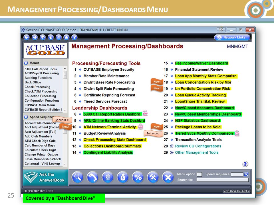 M ANAGEMENT P ROCESSING /D ASHBOARDS M ENU 25 New! Enhanced! Covered by a Dashboard Dive