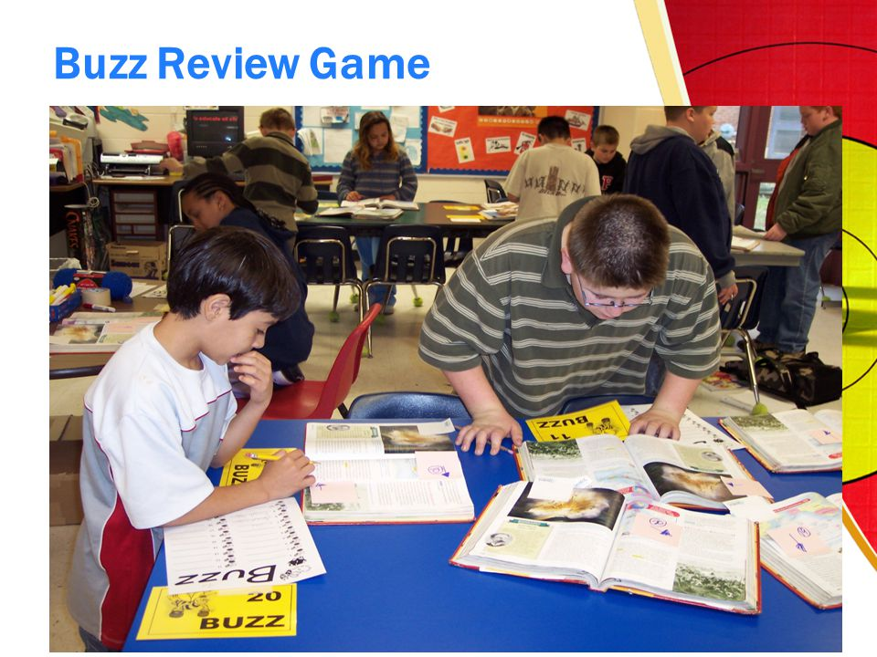 Buzz Review Game